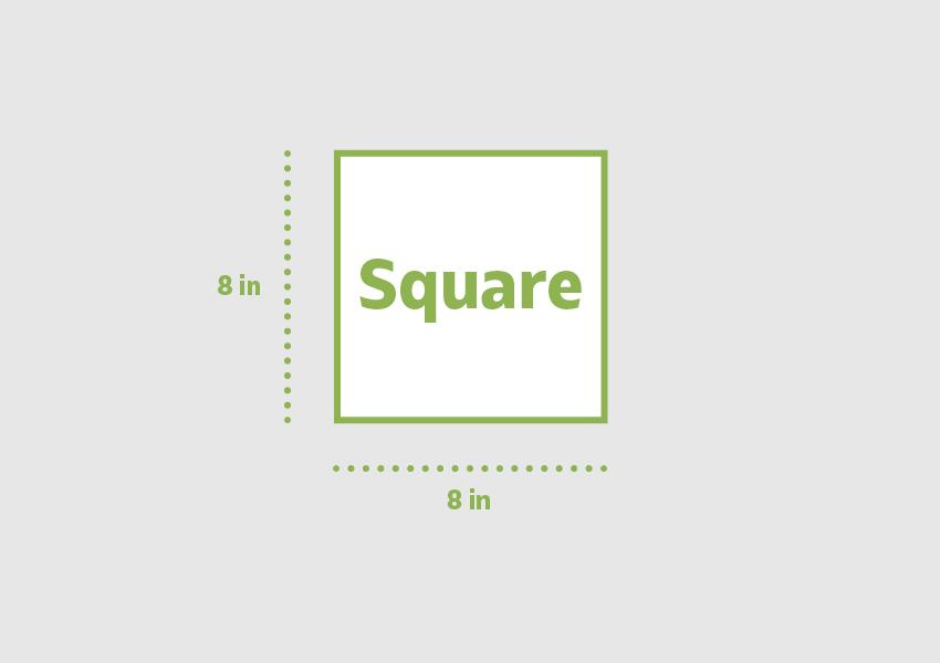 Square 8 x 8 in