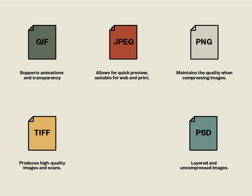 Different types of raster files GIF JPEG PNG TIFF PSD