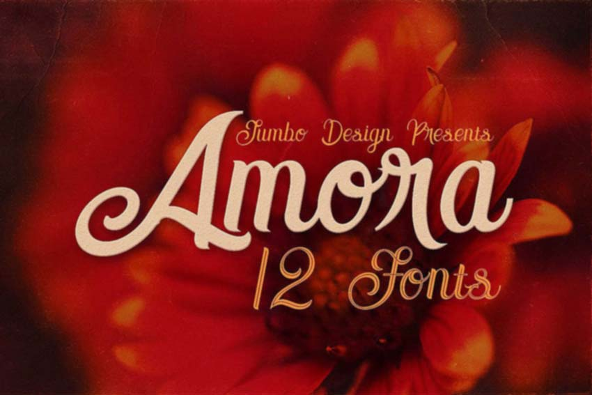 Amora Font Collection