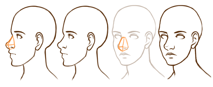 Example of nose from different angles