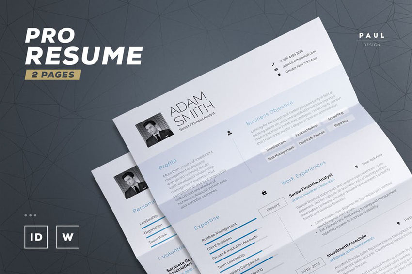 Pro Resume InDesign Template