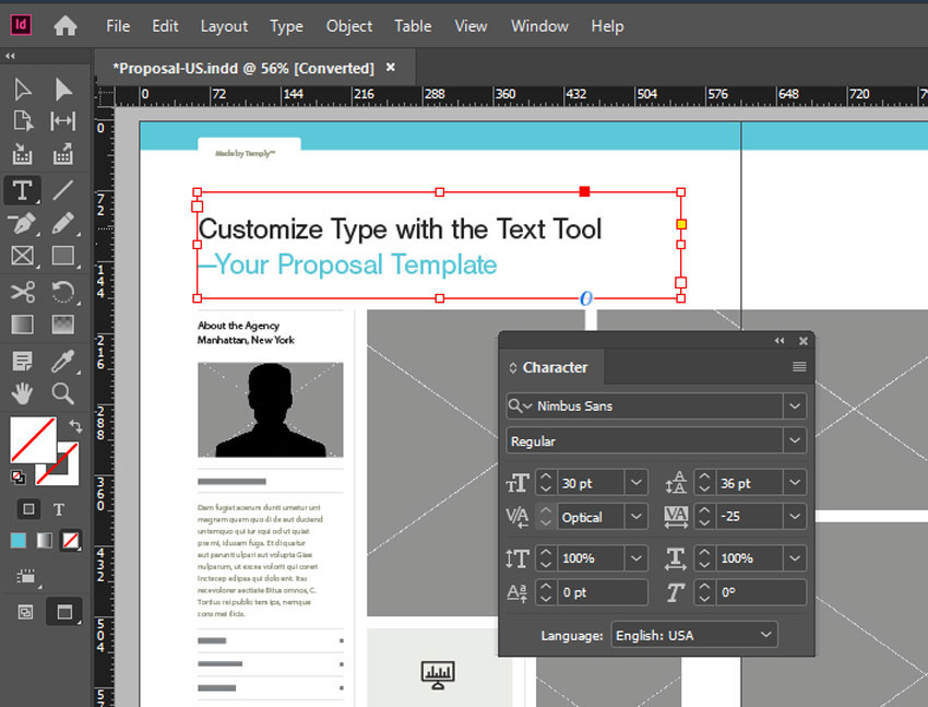 Type Tool InDesign