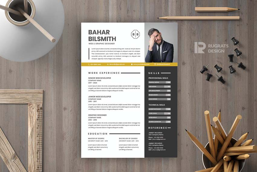 Resume with infographics