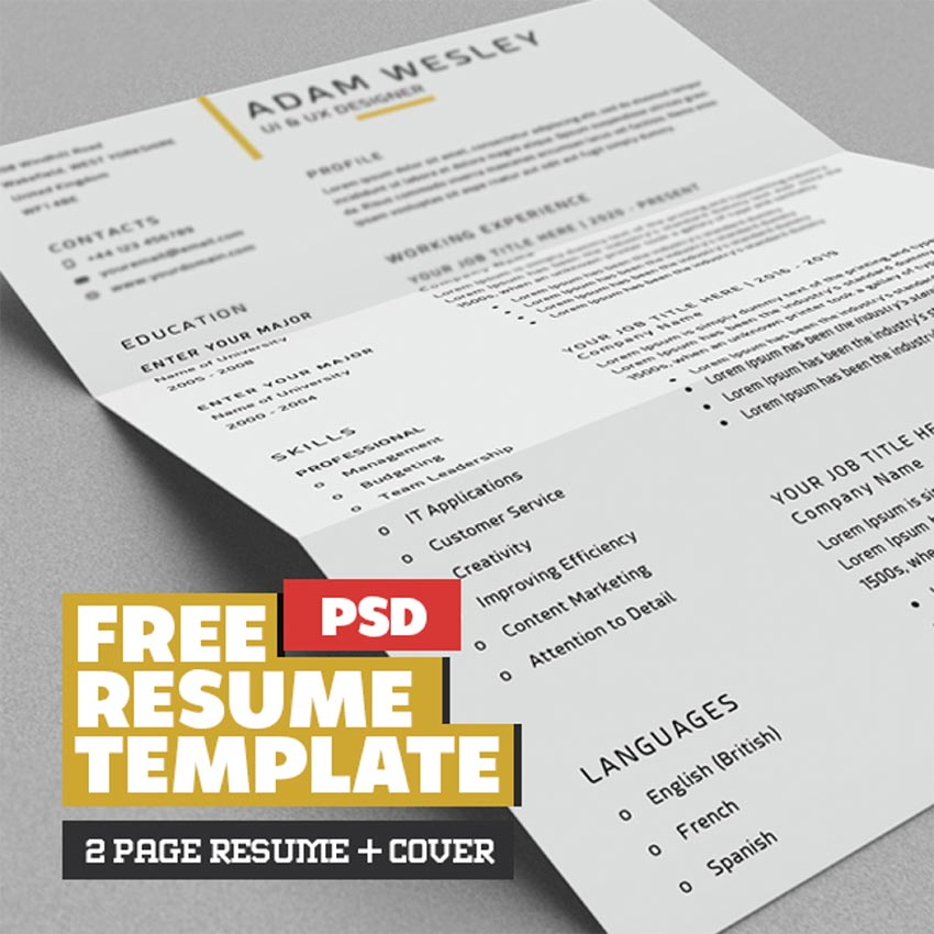 Free Simple Resume Template with Cover Letter  Business Card PSD