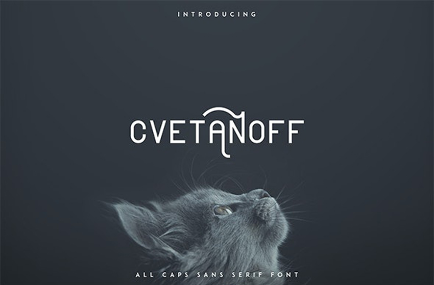 Cvetanoff Cool Modern Fonts