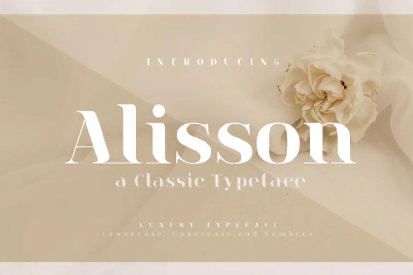 Alisson Elegant Font Bodoni Typeface Inspiration