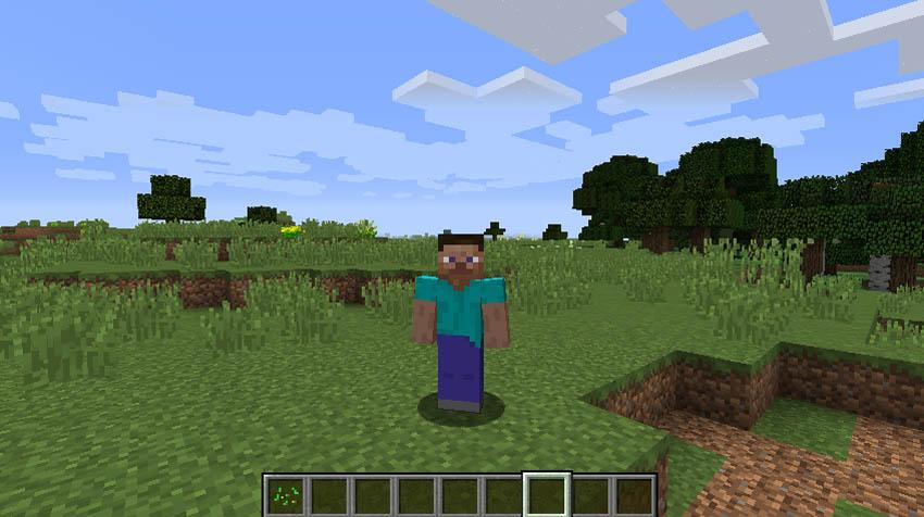 minecraft screenshot avatar