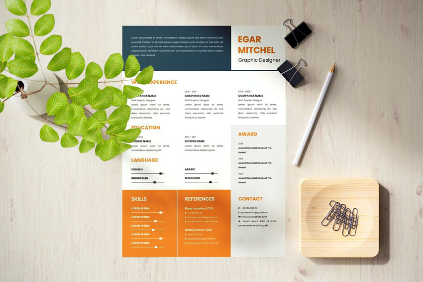 Resume Design Template