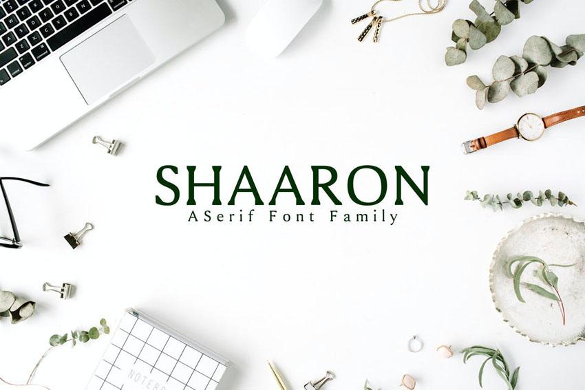 Shaaron A New Serif Font Family