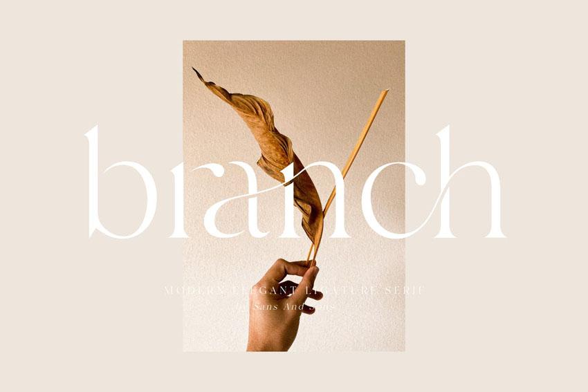 Branch Elegant Serif Typeface