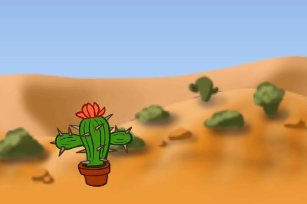 Cactus Seeking Hug