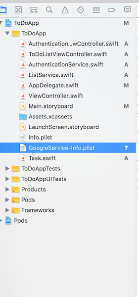 The GoogleService config file in the project folder