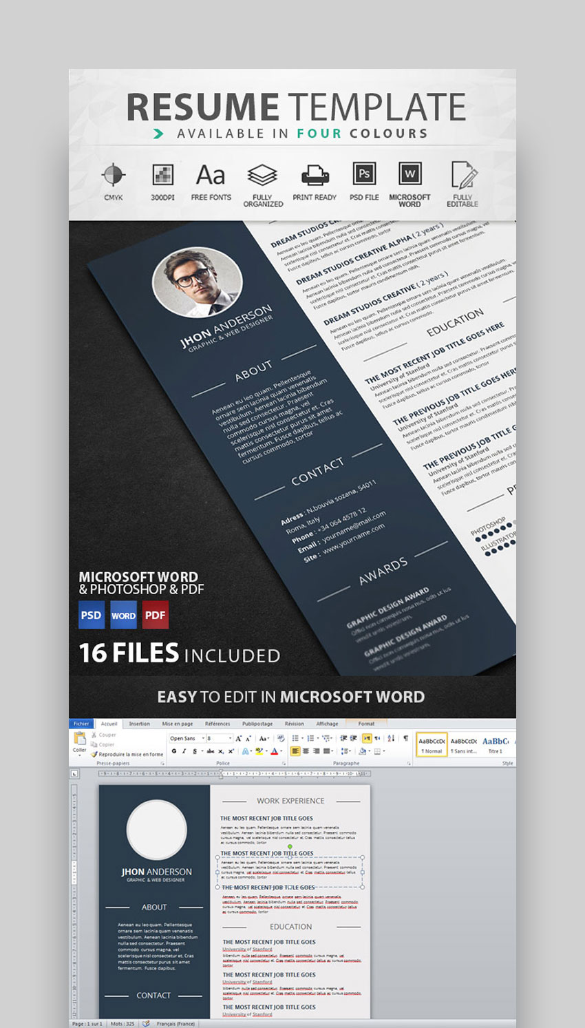 Creative Visual Resume Template Design