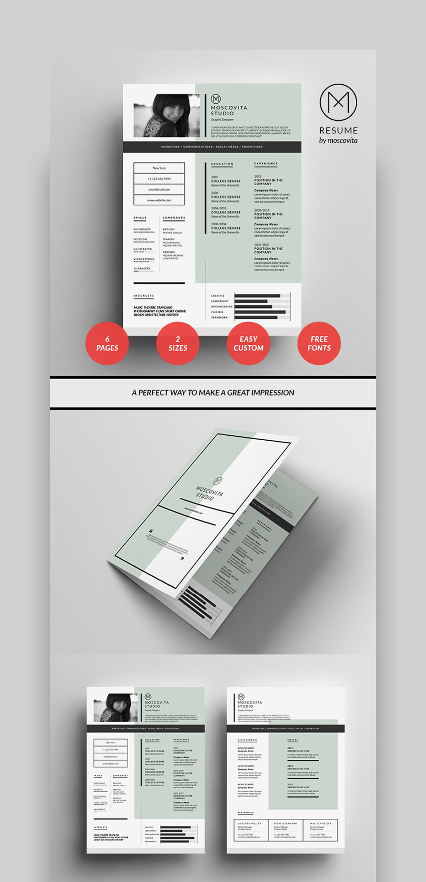 Graphical Resume Template Format Design