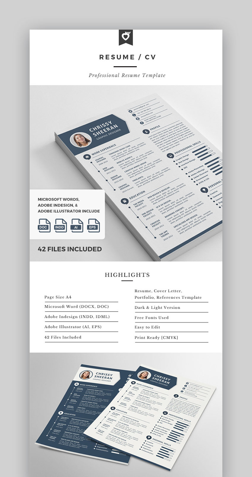 Visual Resume  CV With Graphics and Infographics