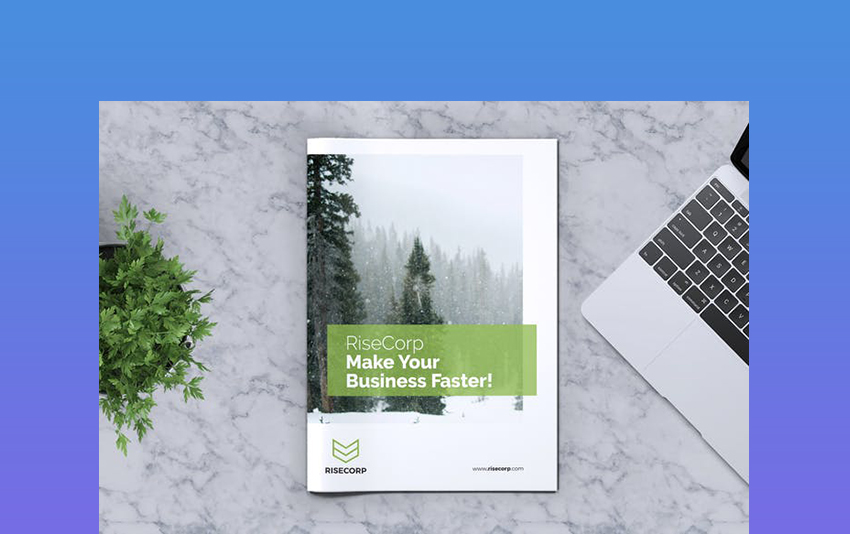 Creative Business Brochures Template Vol16