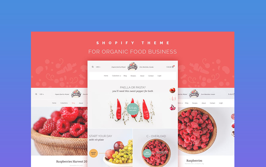25 Best Shopify Themes With Responsive (Mobile-Ready