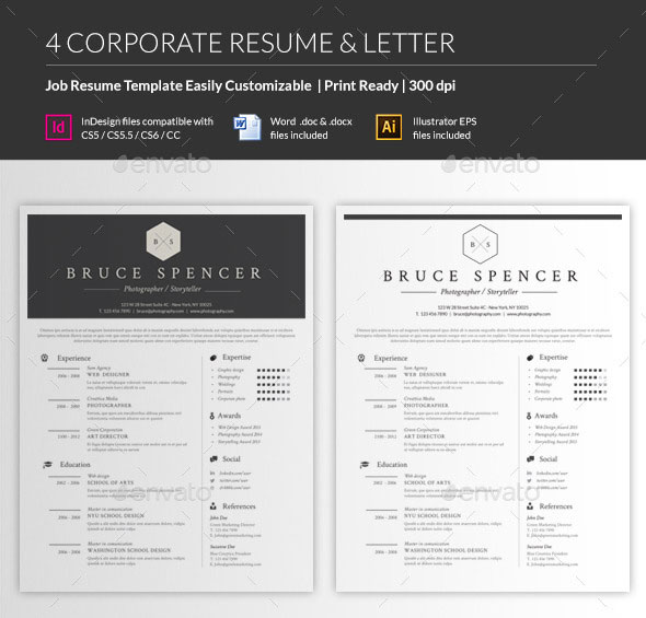Job Resume Template  Font For A Resume