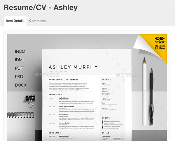 Modern Resume Ashley Template  Modern Resume Formats