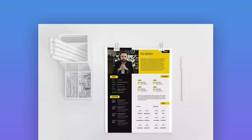 Modern Creative Resume Infographic Template Set