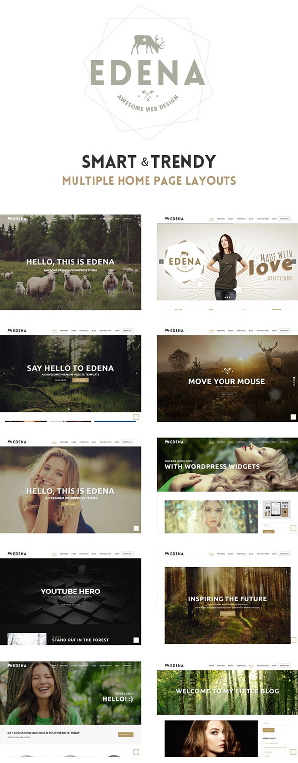 Edena New WordPress Theme 2016