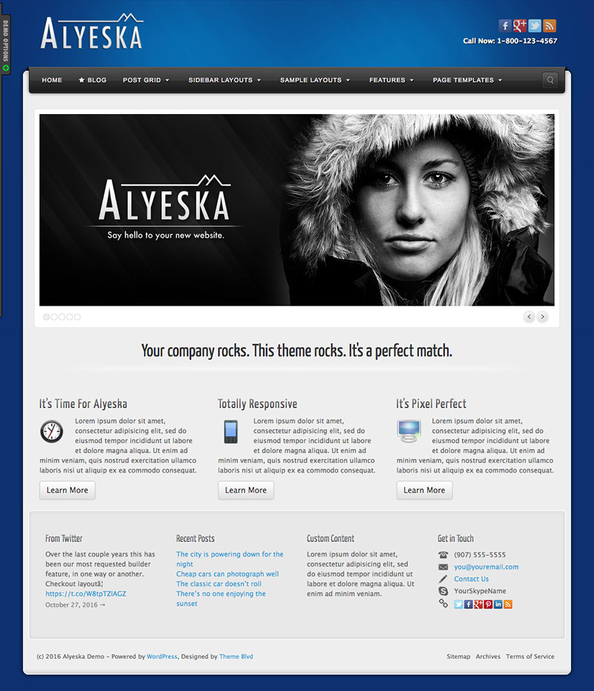 Alyeska Multi-Purpose Company Business WordPress Theme