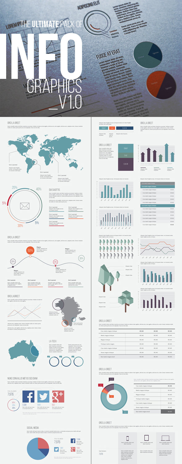 Infographic Template Design Elements v10