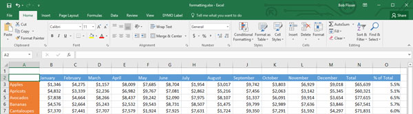 Excel header formatting cell styles