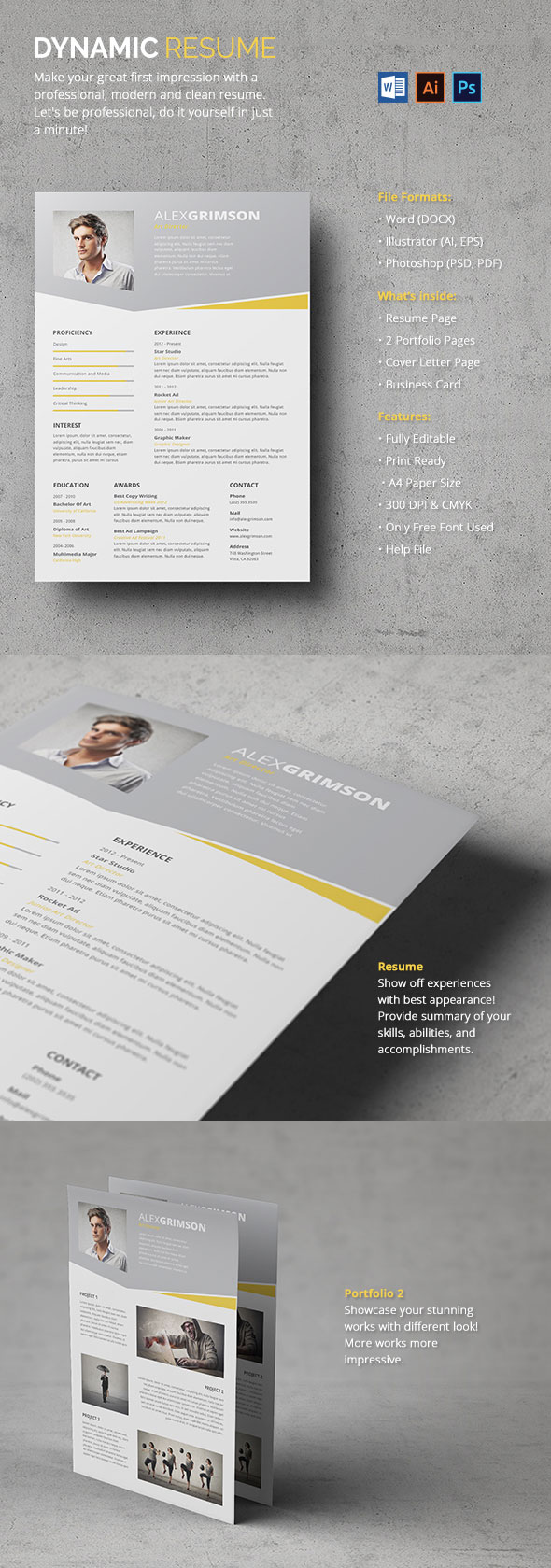 Dynamic Resume With Portfolio Pages Included