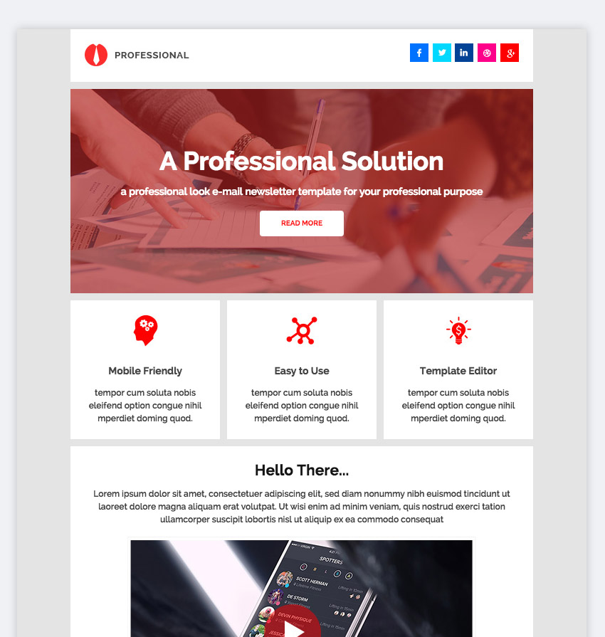 Professional - Email Newsletter Pack  MailChimp
