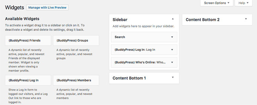 BuddyPress widget options