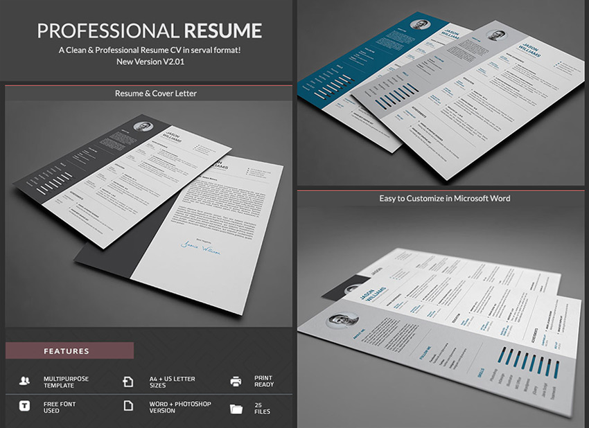 Simple Professional Word Resume With CV Template