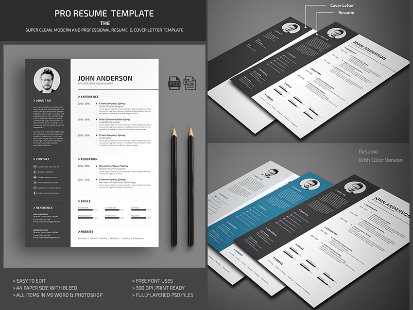 20 Professional Ms Word Resume Templates With Simple Designs For 2018