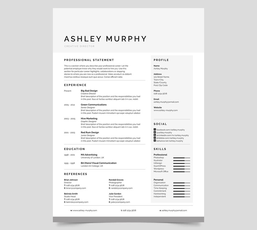 Professional MS Word Resume Template Example  Simple Resume Template Word