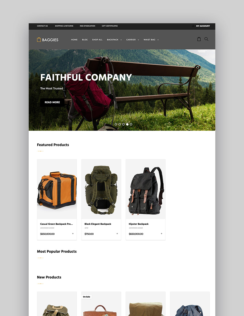 Baggies - Powerful Bag Online Store Theme Design