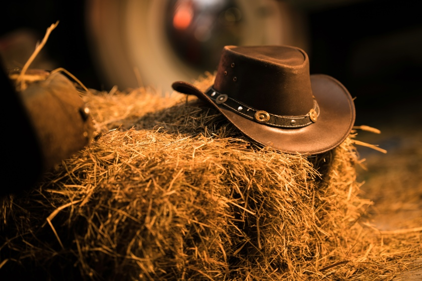 Yeehaw! The Best Country Royalty-Free Music Tracks