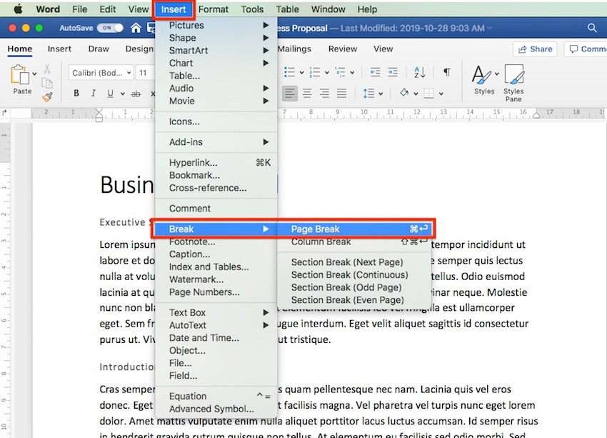 Microsoft Word - How to Insert a Page Break