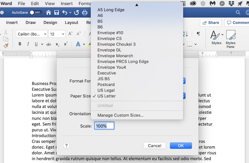 MS Word - Format Paper Size