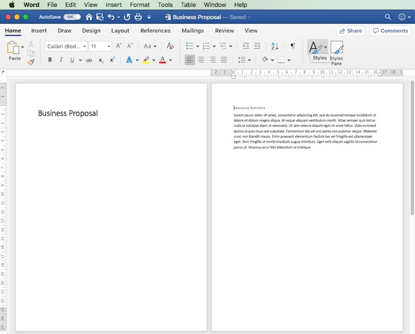 MS Word - Two Pages View