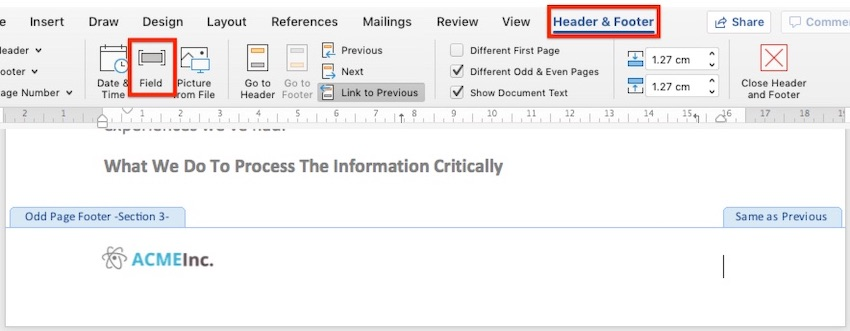 Microsoft Word field button