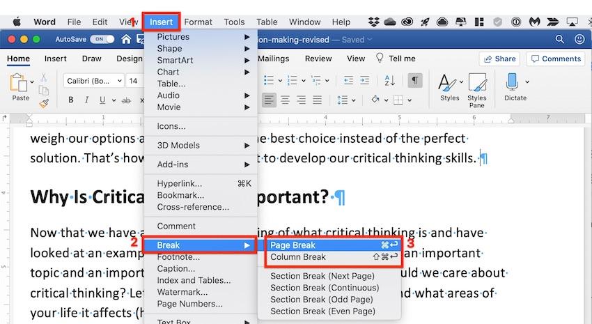 Microsoft Word page break
