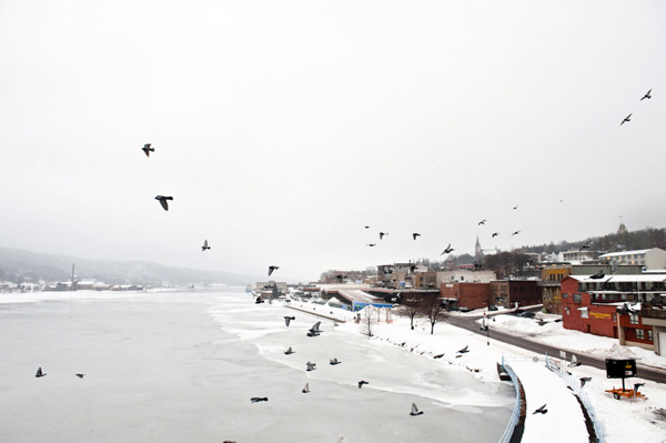 Birds fly near a bridge overlooking Houghton MI in the morning