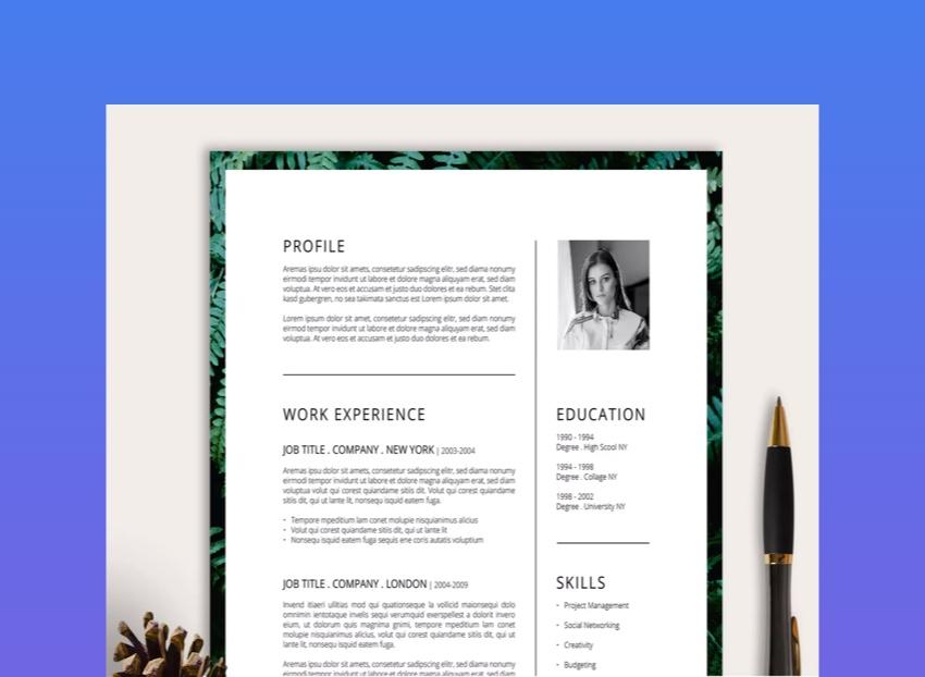 25 Unique Resume Templates With Interesting Resume Ideas