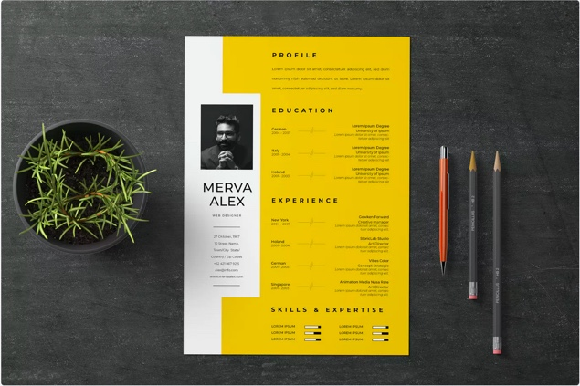 30 Unique Resume Cv Templates With Interesting Creative Resume