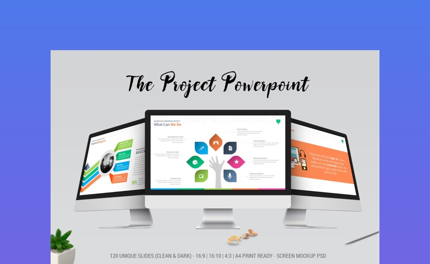 The Project PowerPoint