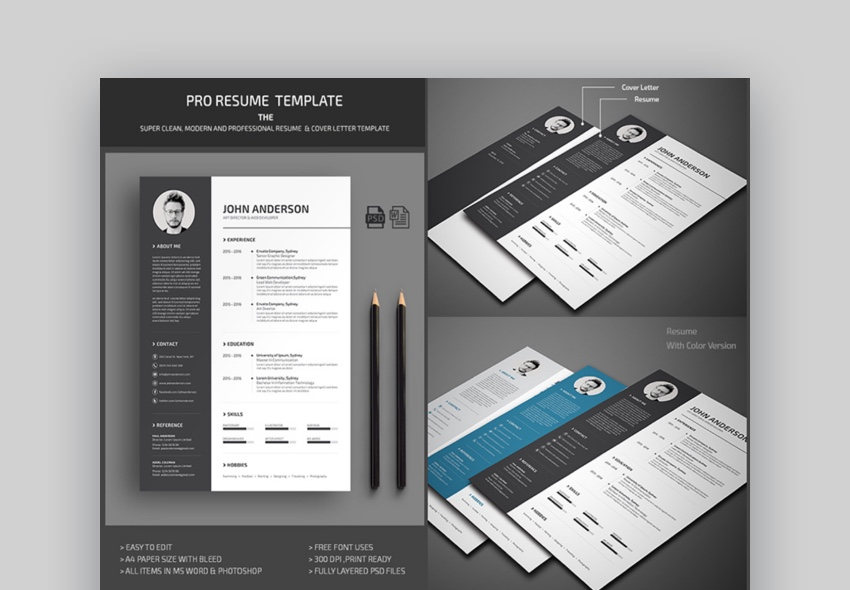39 Professional Ms Word Resume Templates Simple Cv Design