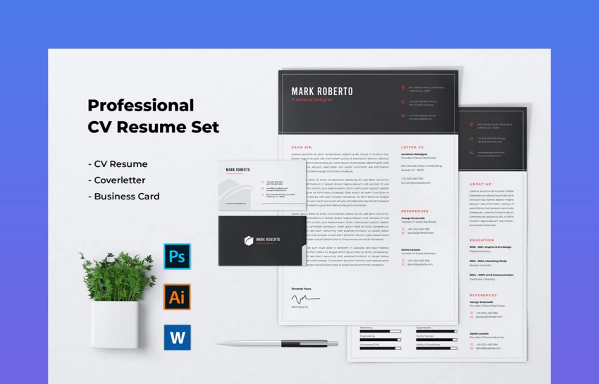 Professional CV ResumeSet Vol 4