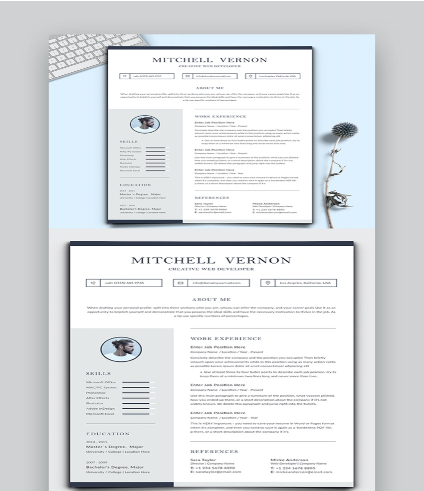 30 Basic Resume Cv Templates Top Examples To Download In 2020