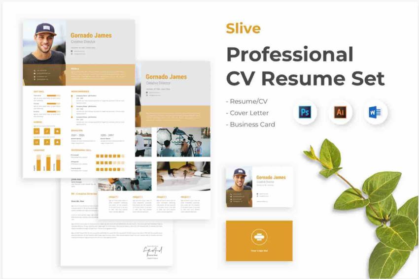 Slive Professional CV Resume Set