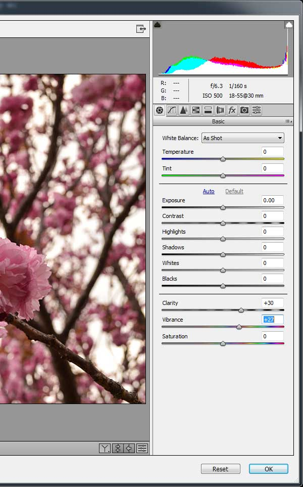 How to Use Focus Area Selection in Adobe Photoshop